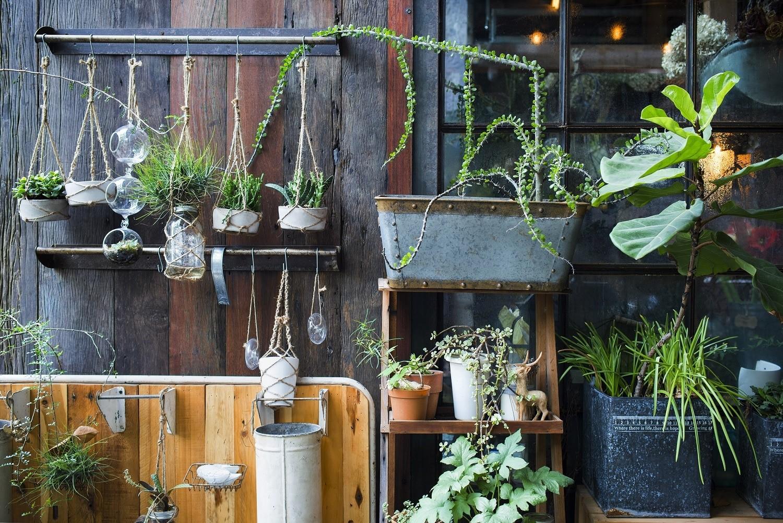 Uniek woonidee verticale tuin in huis zonder onderhoud hip orgnl