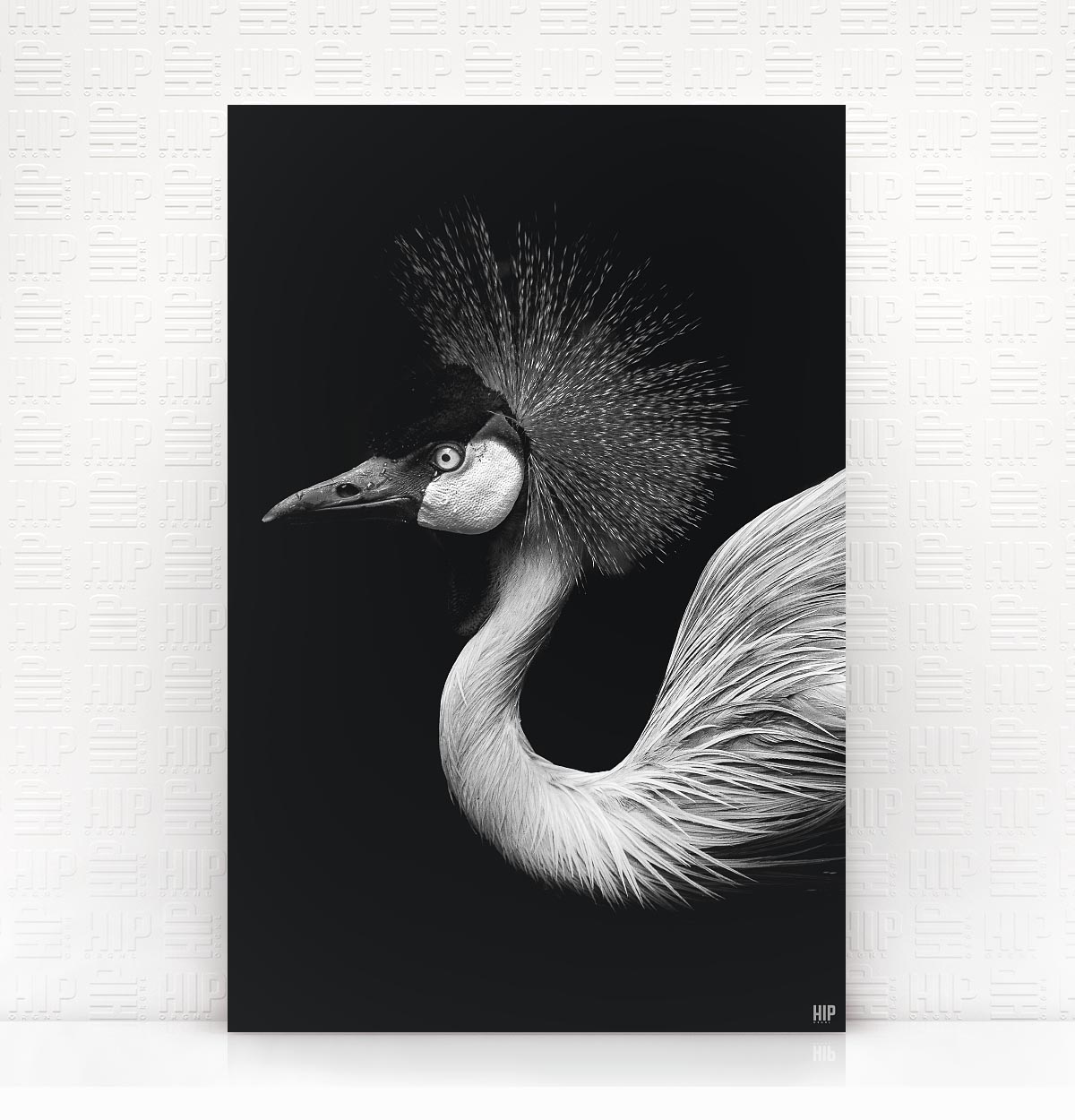 Wanddecoratie Schilderij Vogel Dibond