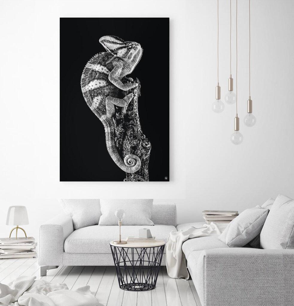 Wanddecoratie Schilderij Kameleon