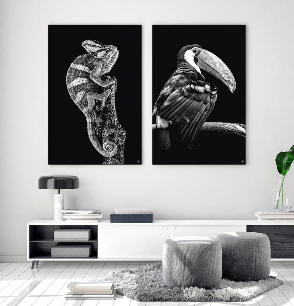 Wanddecoratie Schilderij Kameleon Toekan