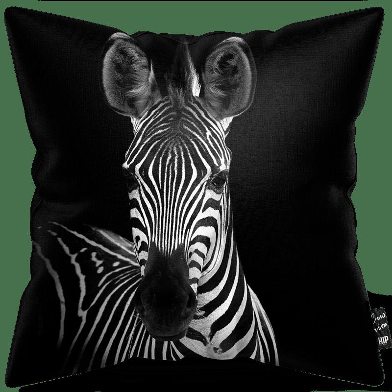 Kussen in het zwart-wit met een zebra erop.