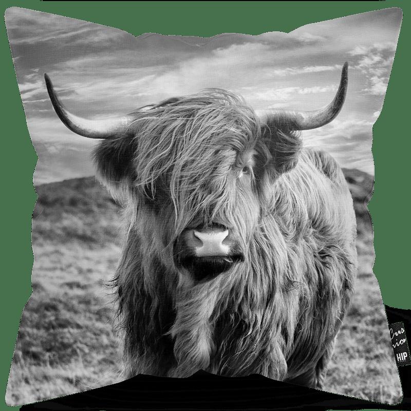 Kussen met bizon in het zwart-wit erop.