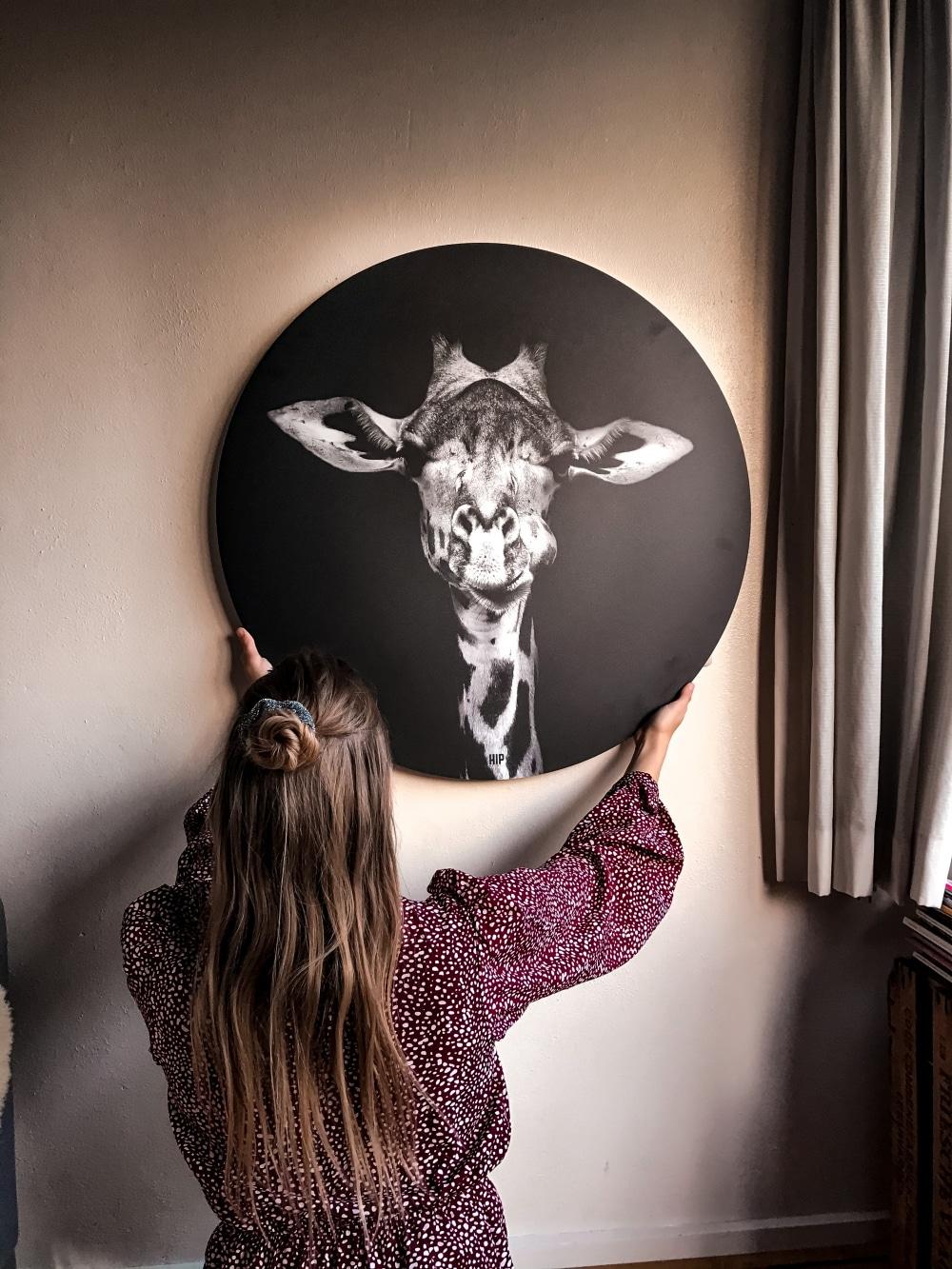 HIP ORGNL sfeer giraffe wandcirkel
