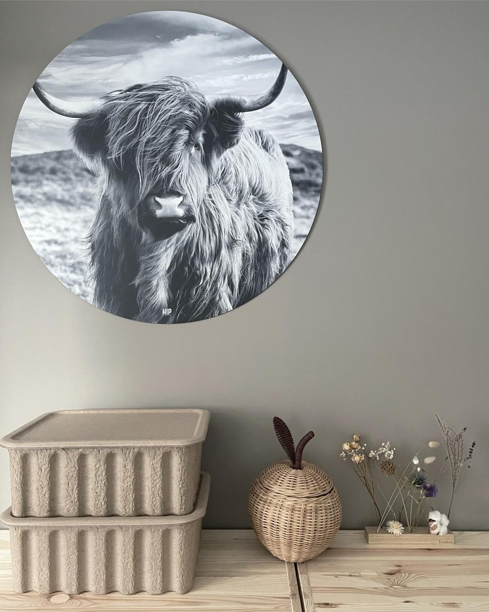 HIP ORGNL sfeer hooglander koe wandcirkel