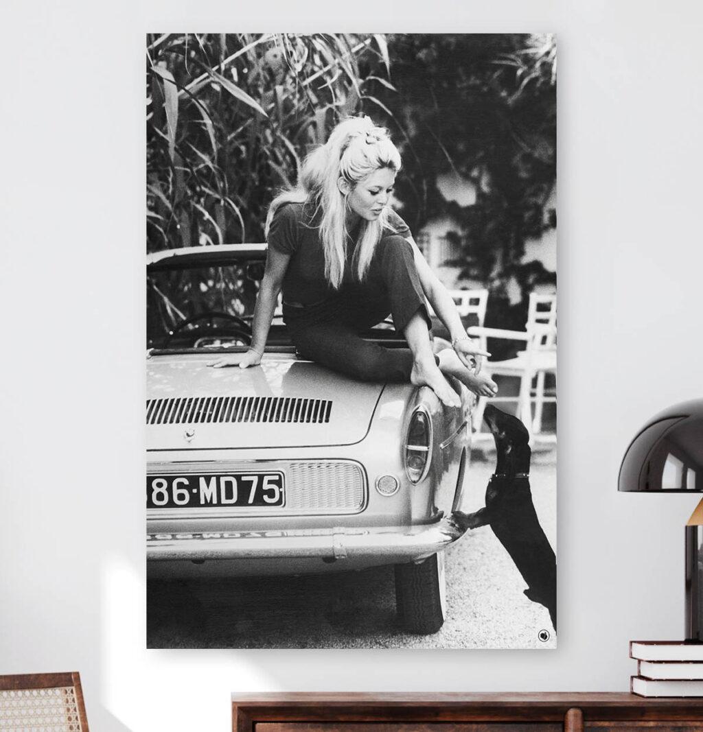 Vierkante wanddecoratie van Brigitte Bardot met een hond afgebeeld.